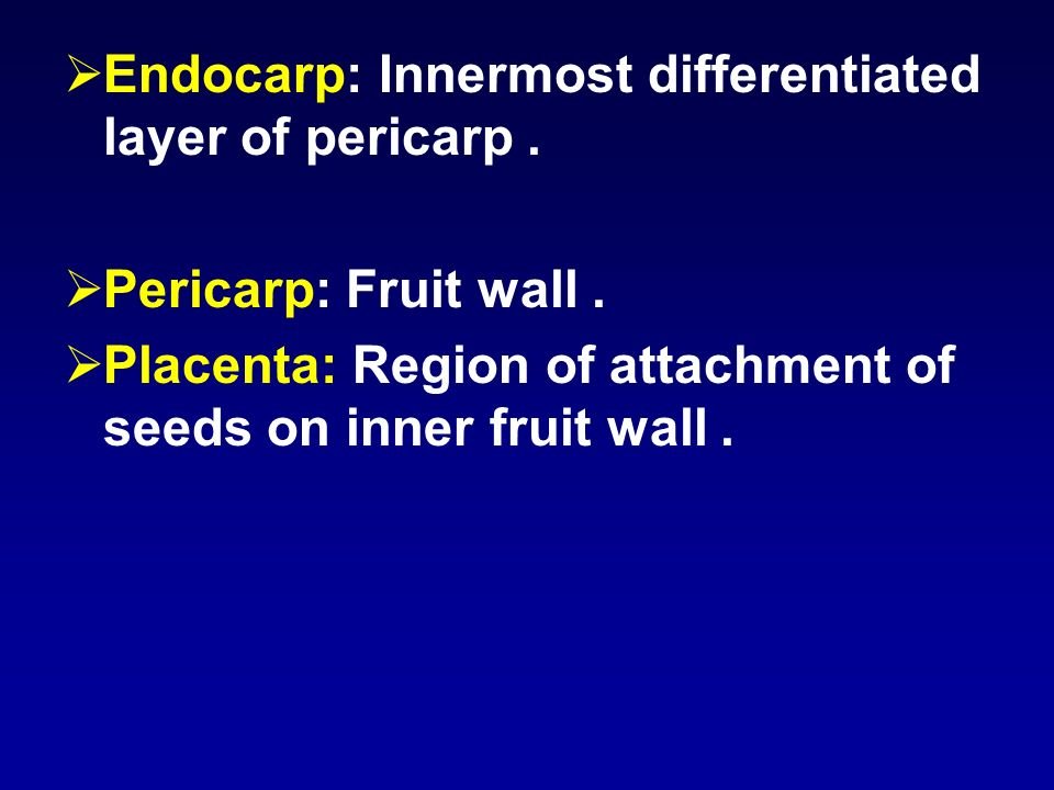Endocarp: Innermost differentiated layer of pericarp.