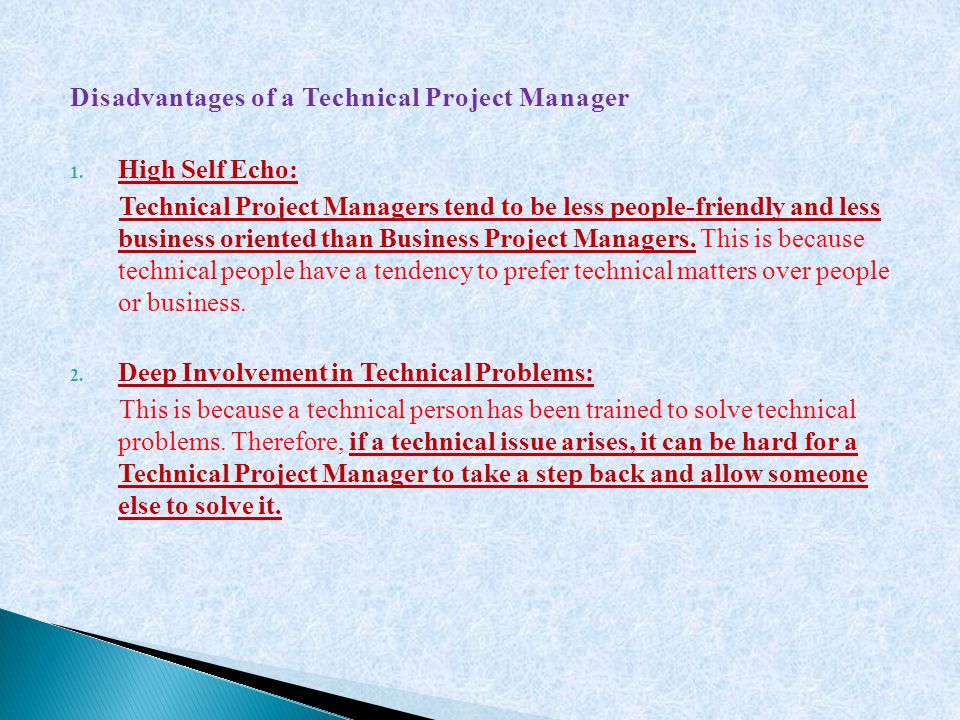 Disadvantages of a Technical Project Manager
