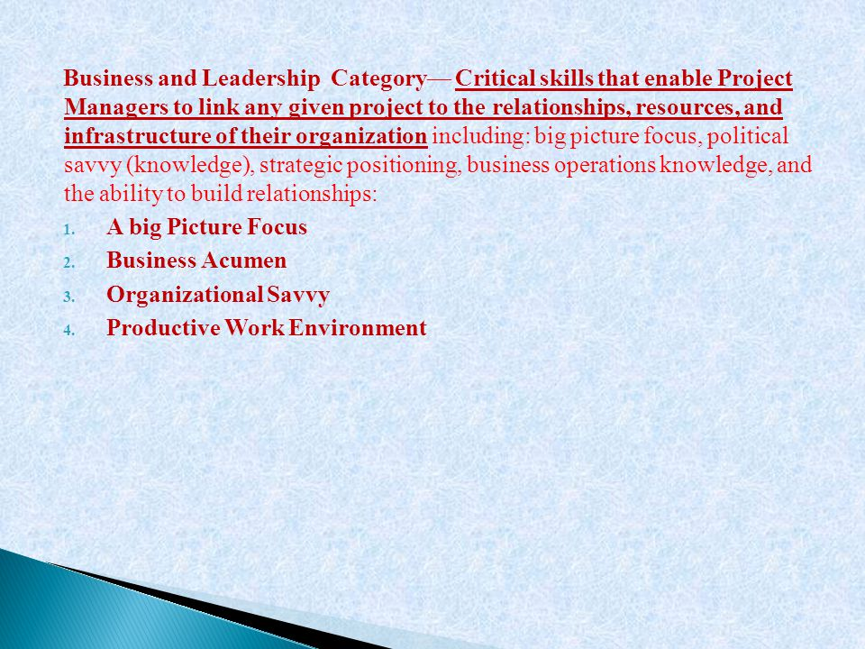 Business and Leadership Category— Critical skills that enable Project Managers to link any given project to the relationships, resources, and infrastructure of their organization including: big picture focus, political savvy (knowledge), strategic positioning, business operations knowledge, and the ability to build relationships: