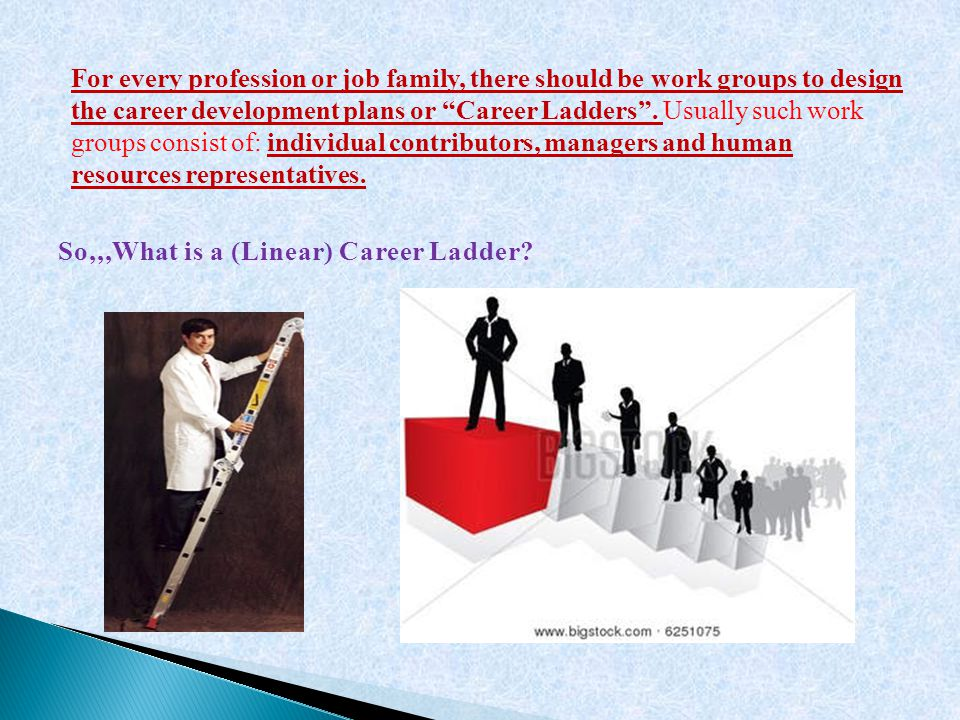 For every profession or job family, there should be work groups to design the career development plans or Career Ladders .