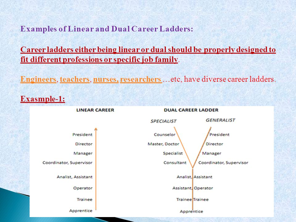 Examples of Linear and Dual Career Ladders: