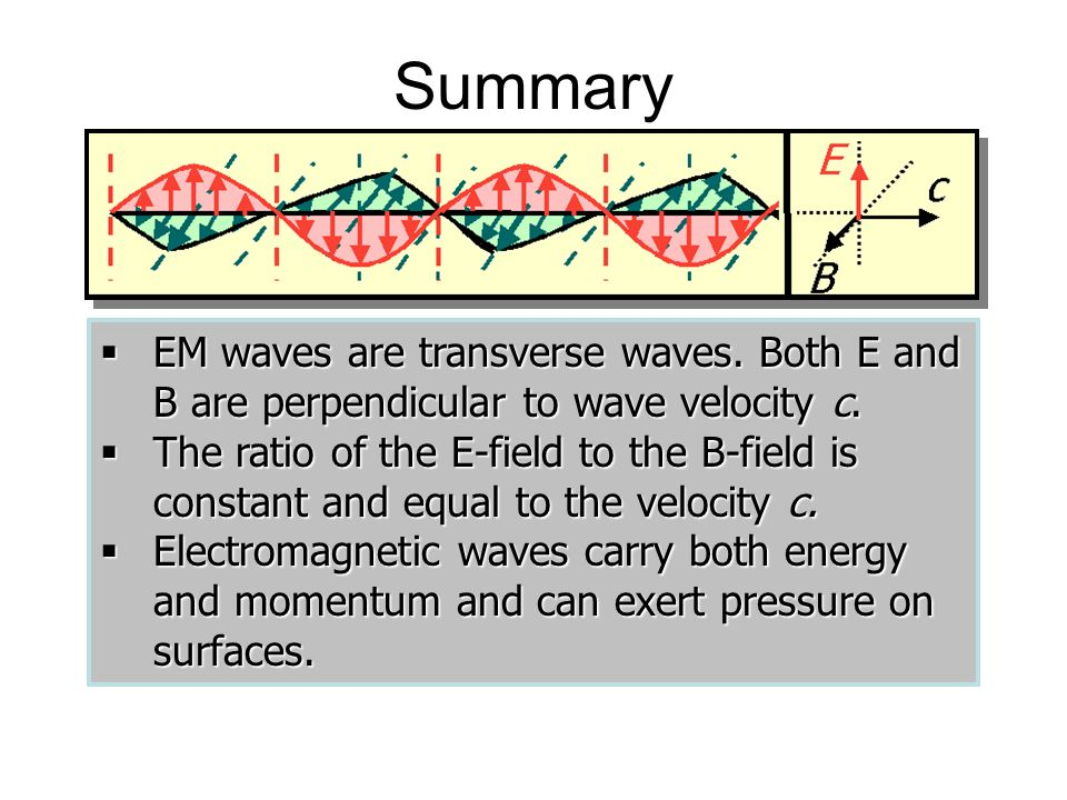 Summary EM waves are transverse waves. Both E and B are perpendicular to wave velocity c.