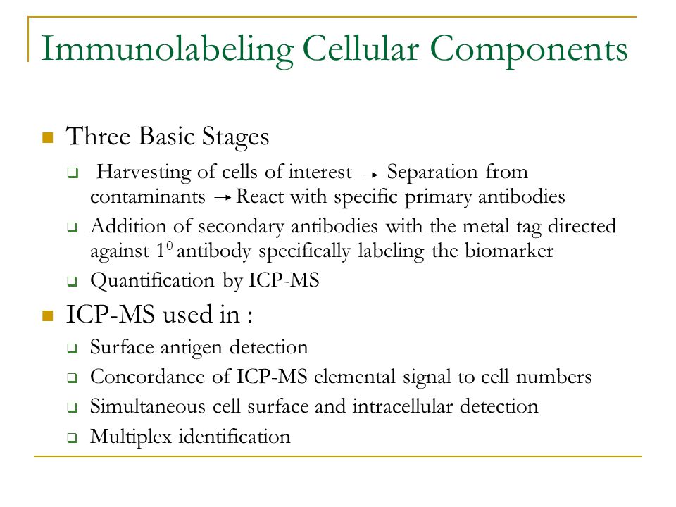 Immunolabeling Cellular Components