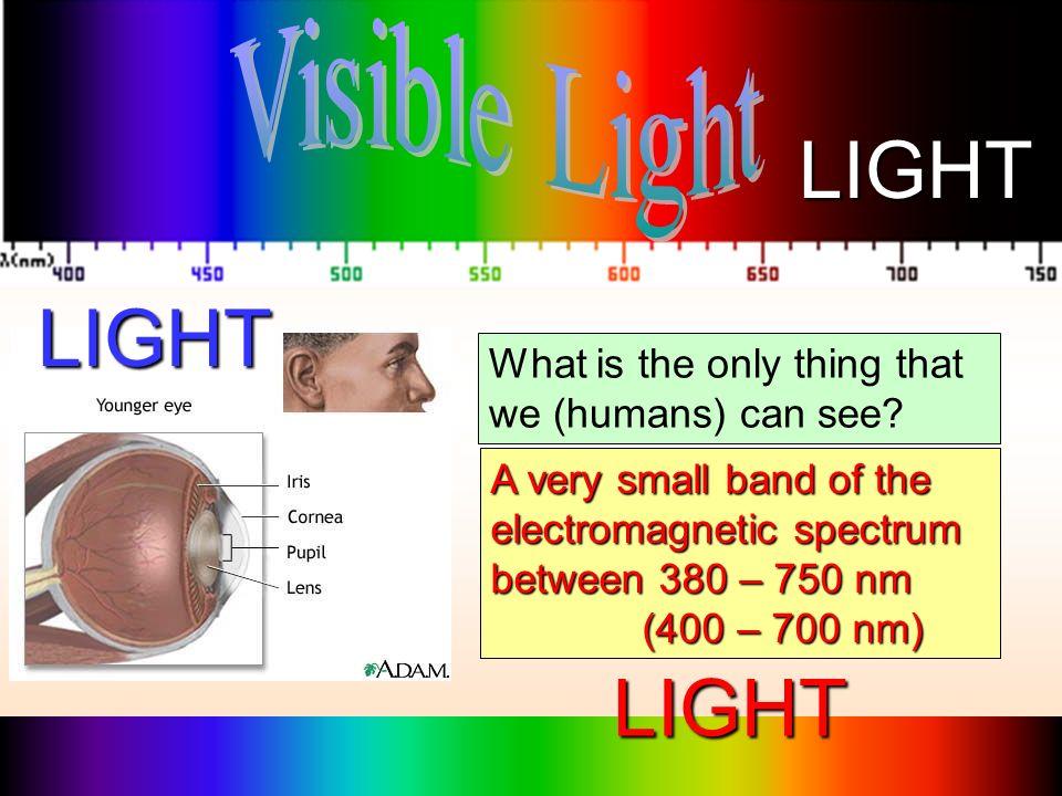 LIGHT LIGHT LIGHT Visible Light