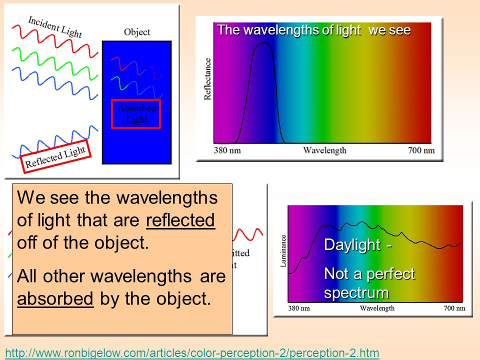 We see the wavelengths of light that are reflected off of the object.