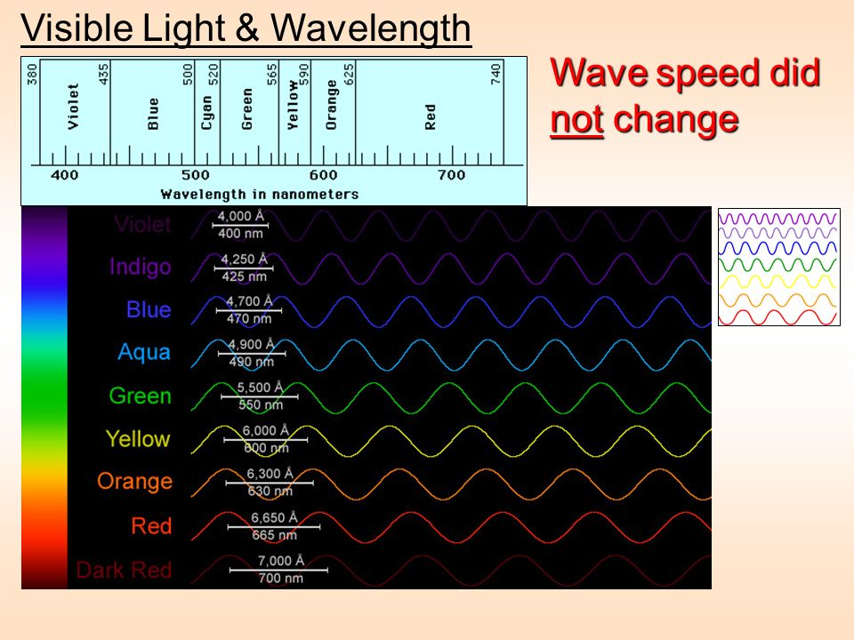 Visible Light & Wavelength Wave speed did not change