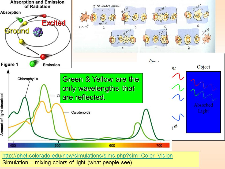 Green & Yellow are the only wavelengths that are reflected.