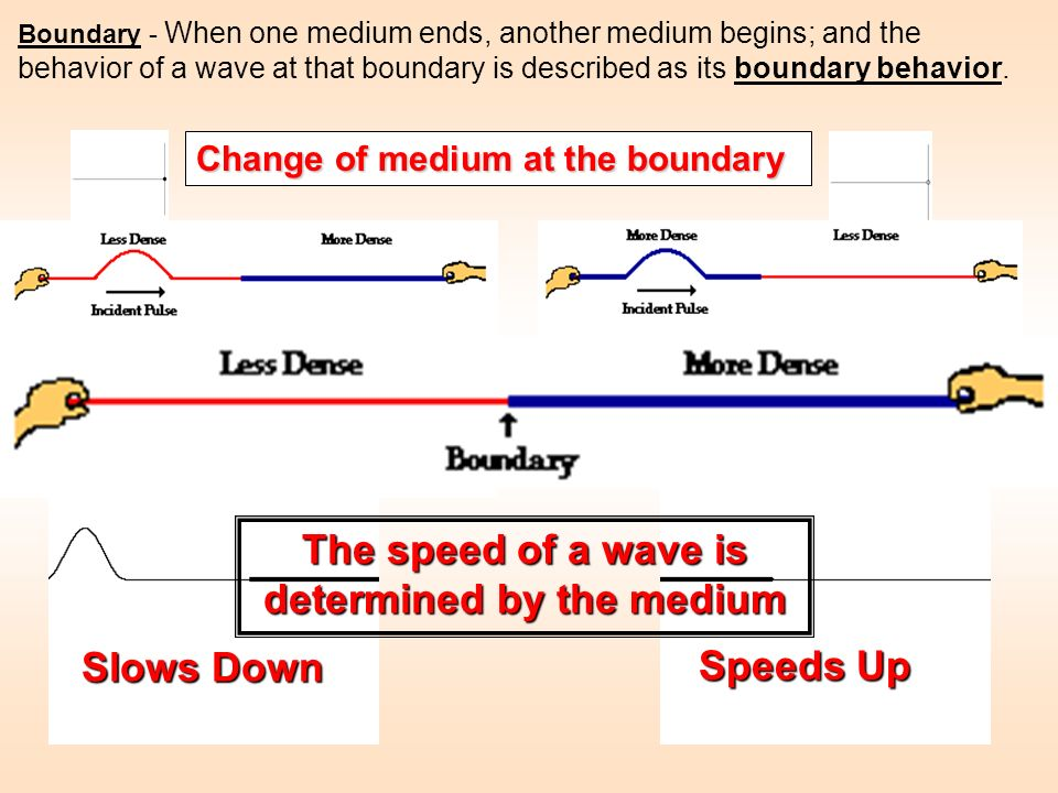 The speed of a wave is determined by the medium