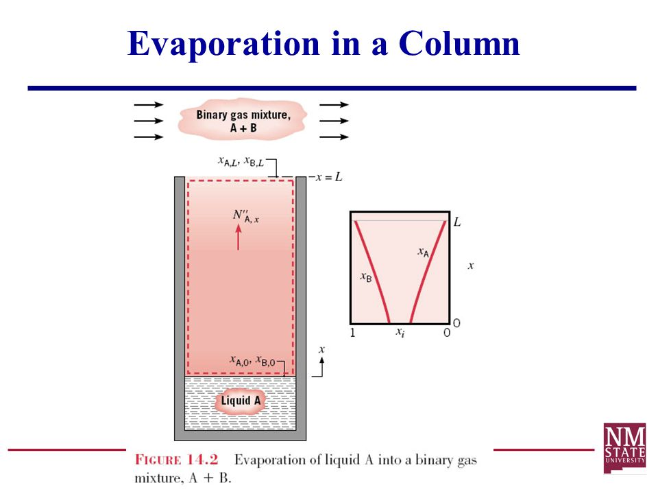 Evaporation in a Column