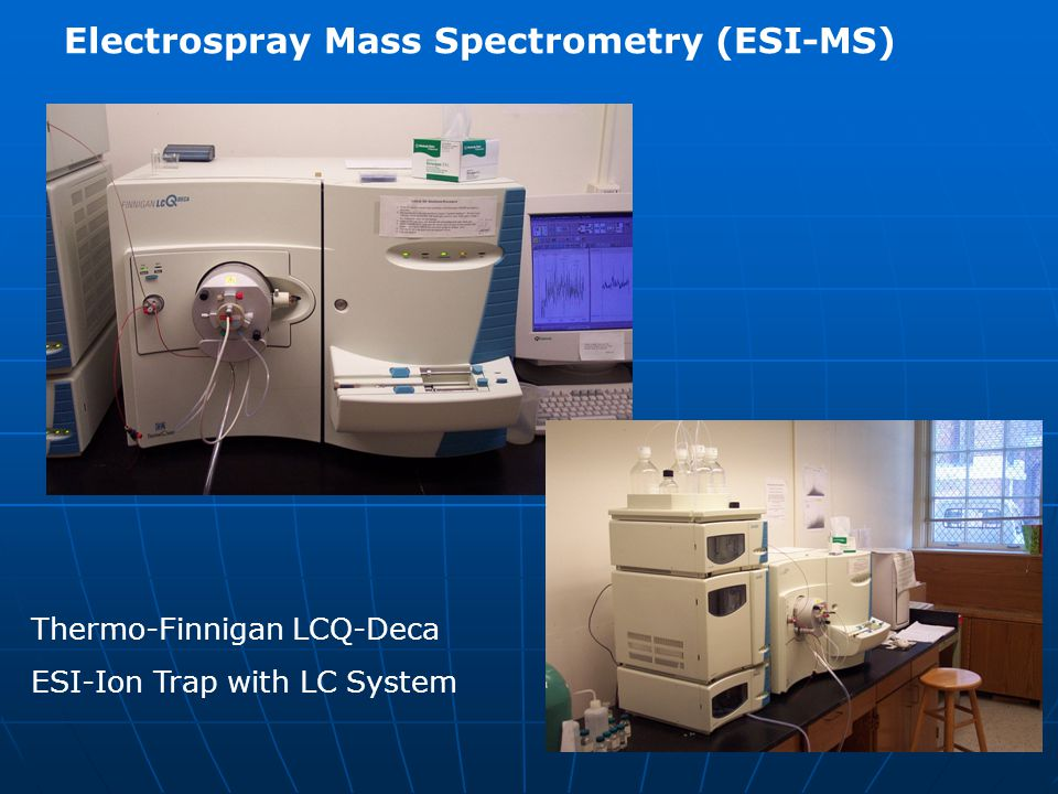 Electrospray Mass Spectrometry (ESI-MS)
