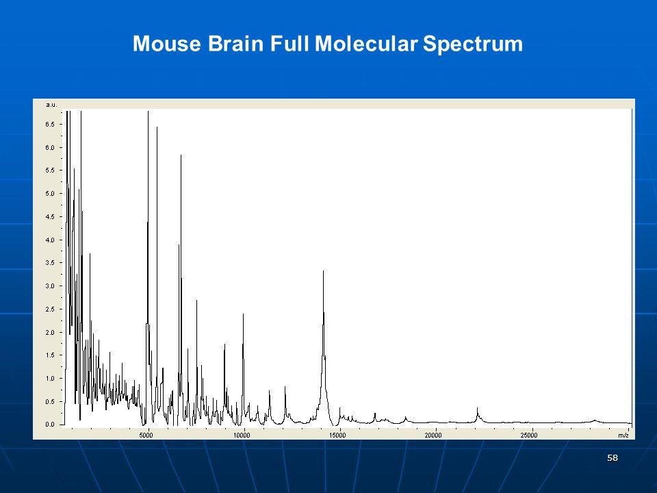 Mouse Brain Full Molecular Spectrum