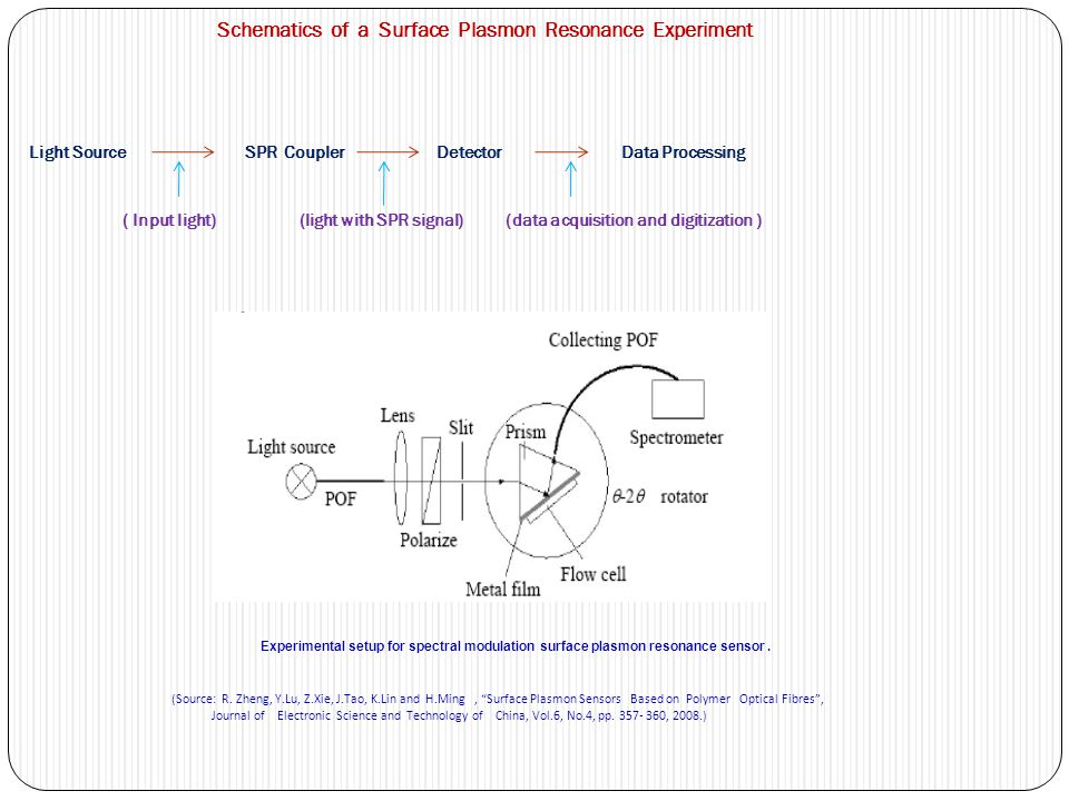 Schematics of a Surface Plasmon Resonance Experiment Light Source SPR Coupler Detector Data Processing ( Input light) (light with SPR signal) (data acquisition and digitization )