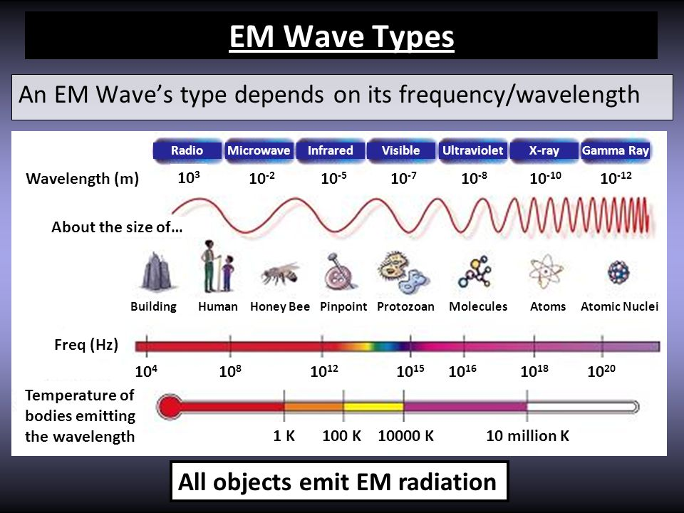 Temperature of bodies emitting the wavelength