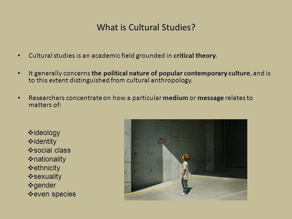What is Cultural Studies