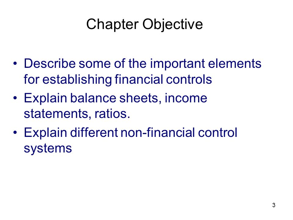 Chapter Objective Describe some of the important elements for establishing financial controls. Explain balance sheets, income statements, ratios.