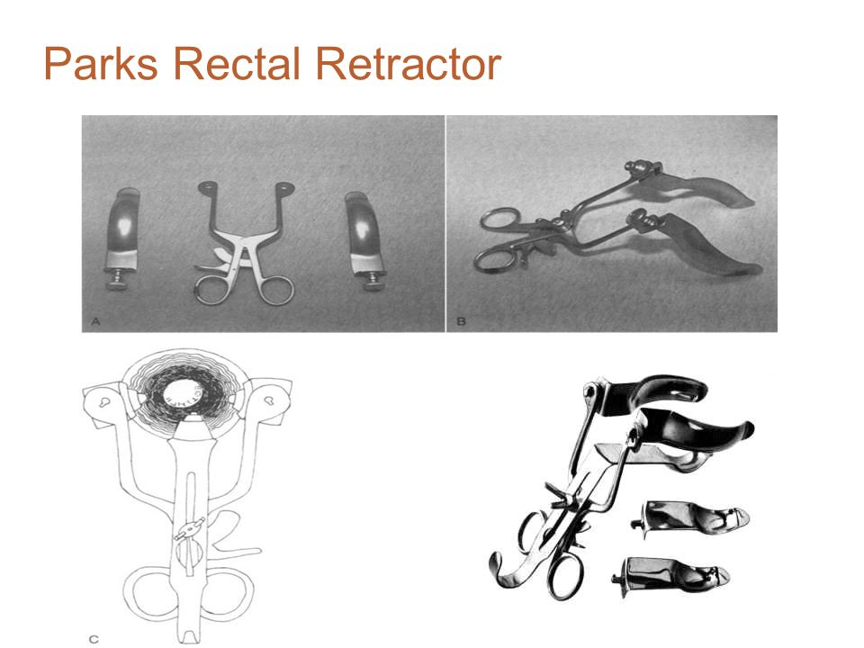 Parks Rectal Retractor