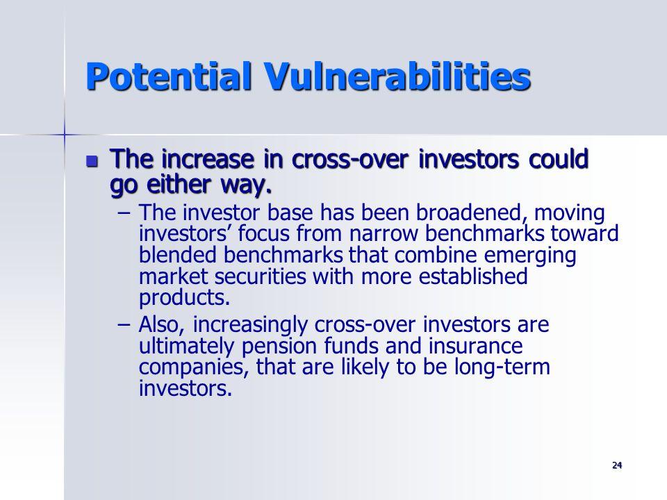 Potential Vulnerabilities