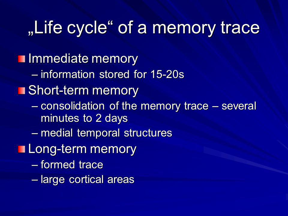 """Life cycle of a memory trace"