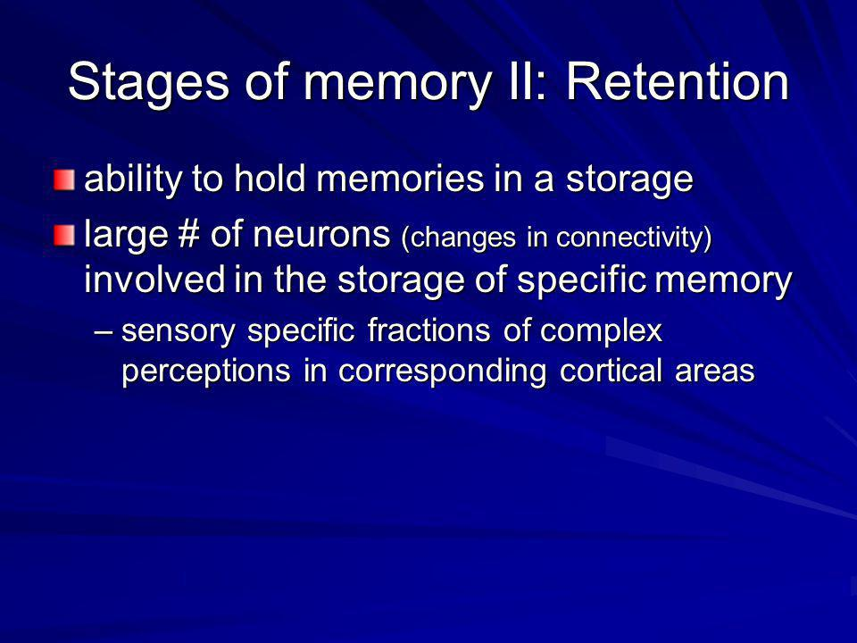 Stages of memory II: Retention
