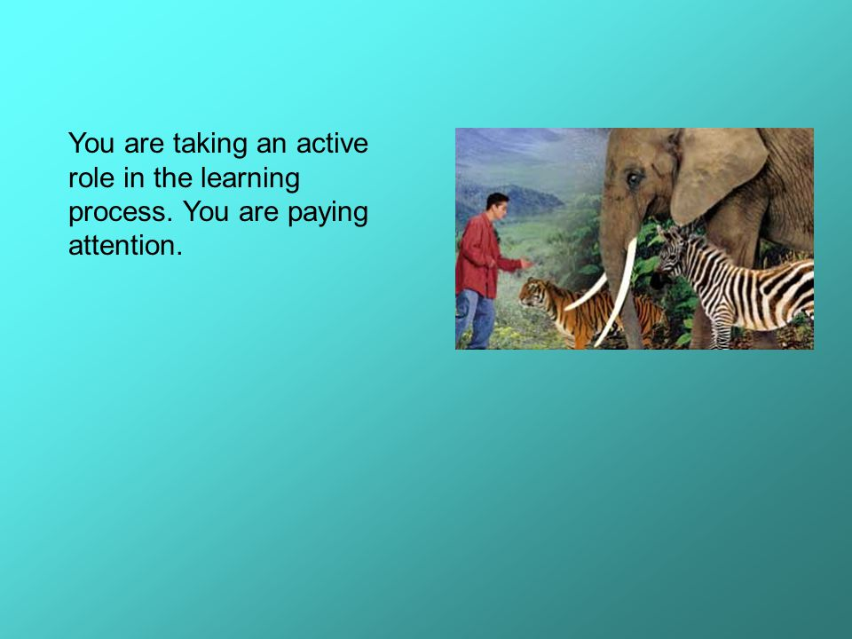 You are taking an active role in the learning process
