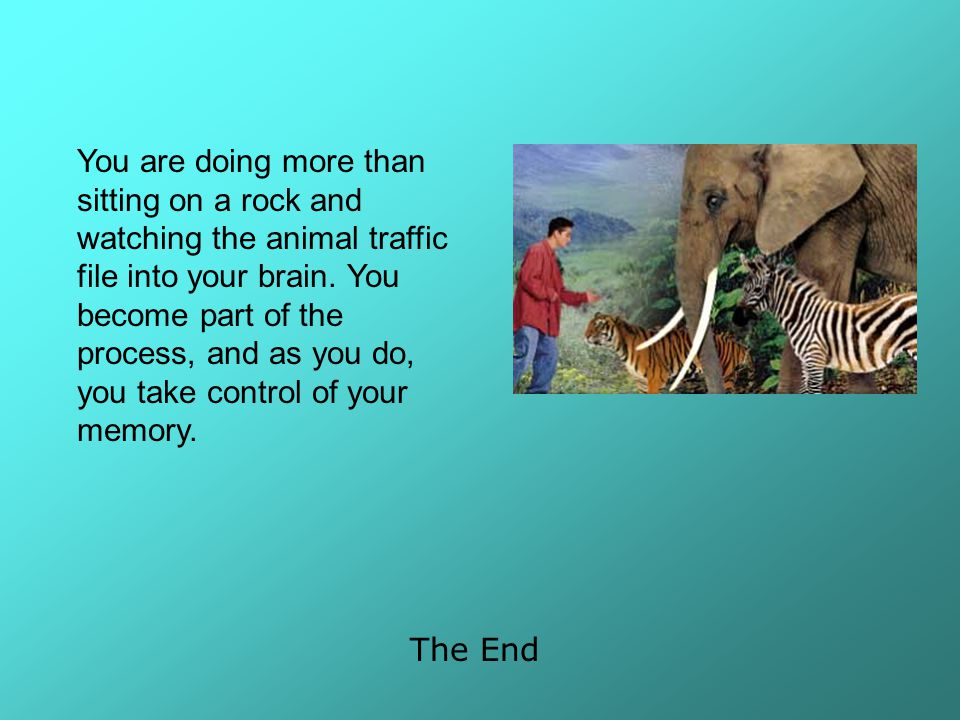 You are doing more than sitting on a rock and watching the animal traffic file into your brain. You become part of the process, and as you do, you take control of your memory.