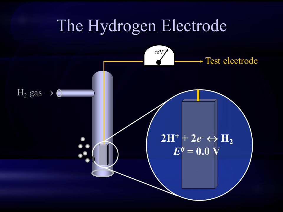 The Hydrogen Electrode
