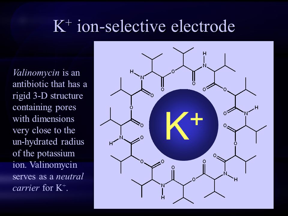 K+ ion-selective electrode