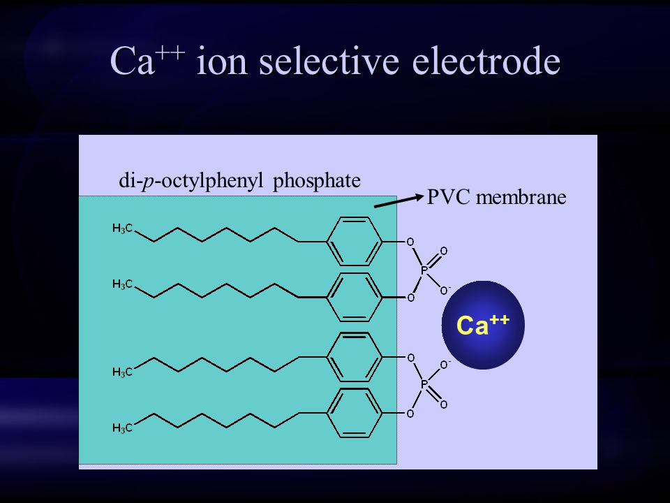 Ca++ ion selective electrode