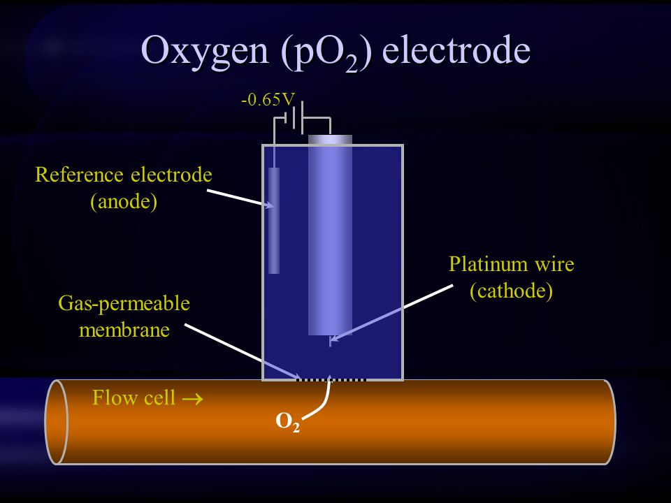 Oxygen (pO2) electrode Reference electrode (anode) Platinum wire