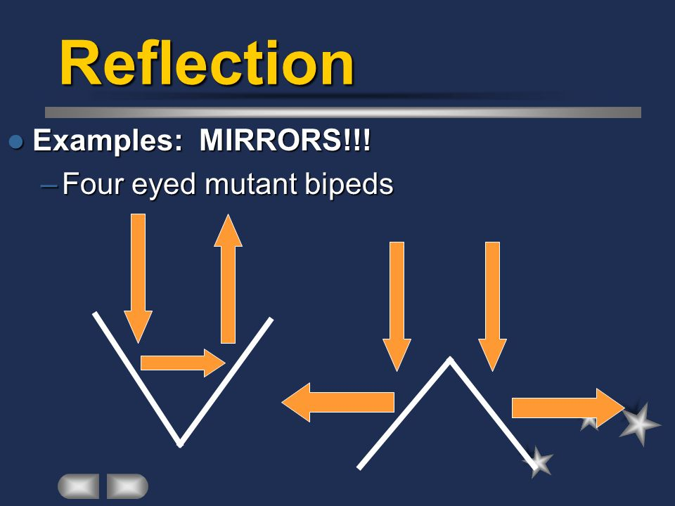 Reflection Examples: MIRRORS!!! Four eyed mutant bipeds