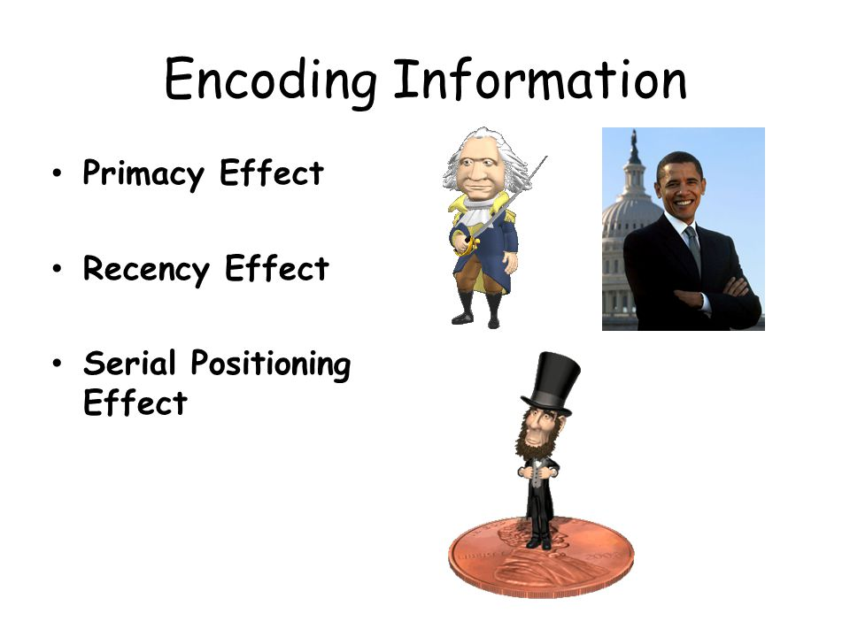 Encoding Information Primacy Effect Recency Effect
