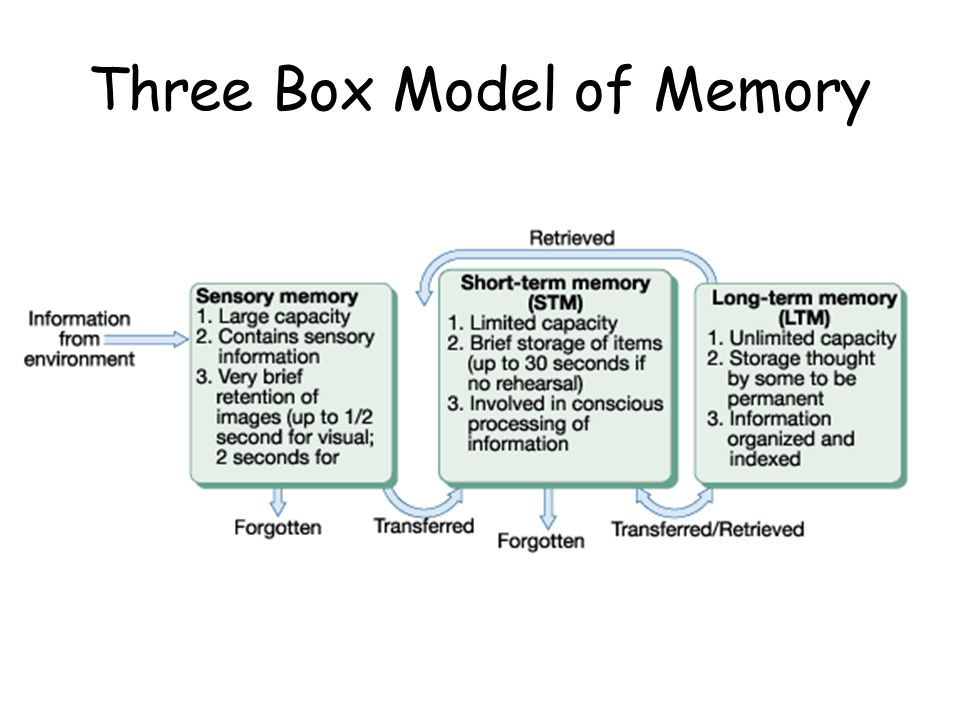 Three Box Model of Memory