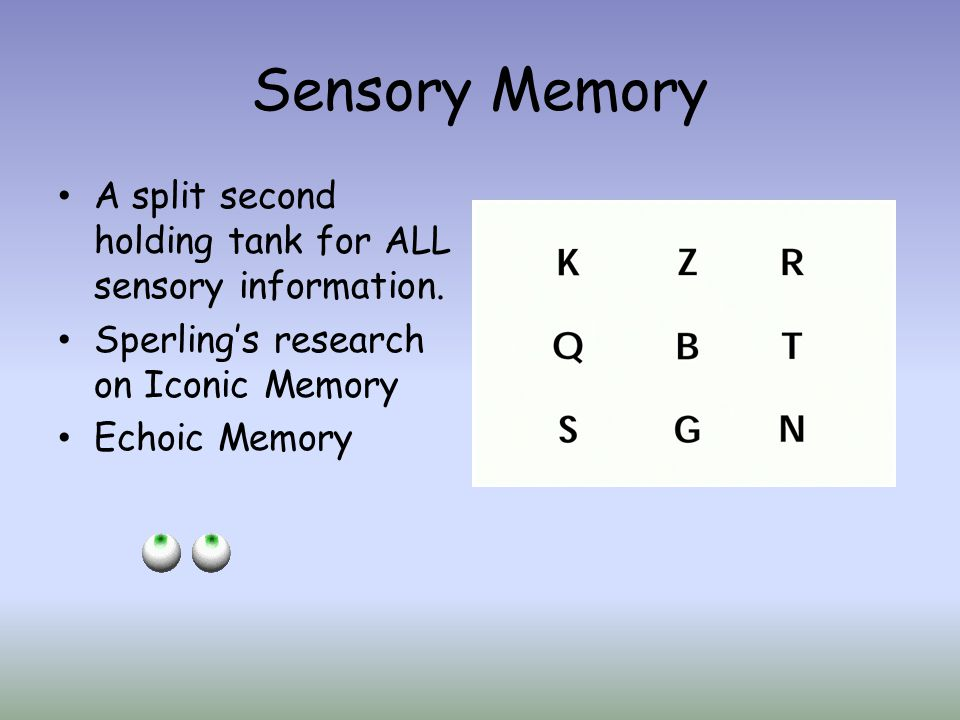 Sensory Memory A split second holding tank for ALL sensory information. Sperling's research on Iconic Memory.