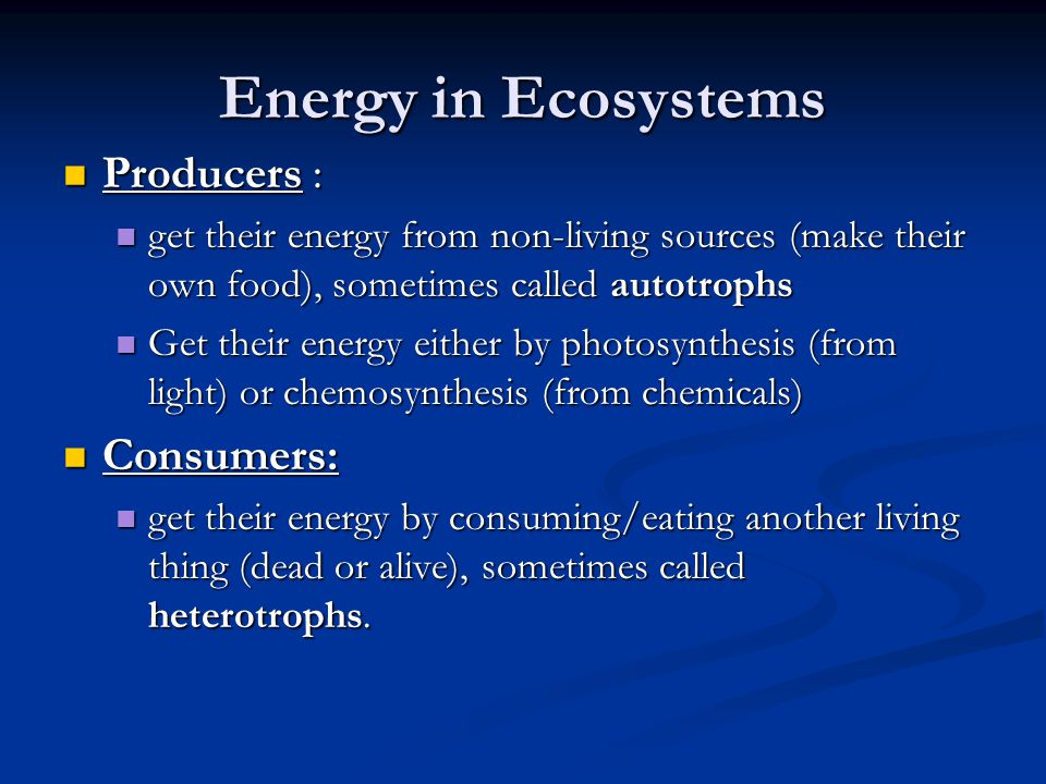 Energy in Ecosystems Producers : Consumers: