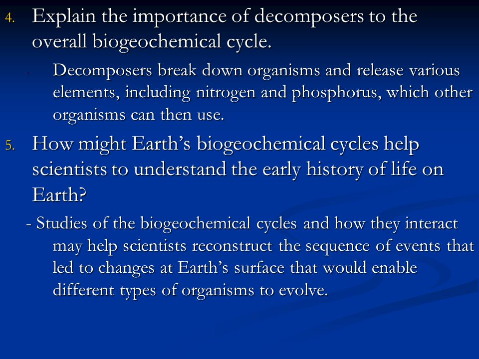 Explain the importance of decomposers to the overall biogeochemical cycle.