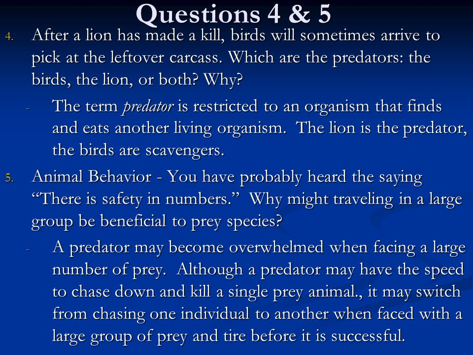 Questions 4 & 5