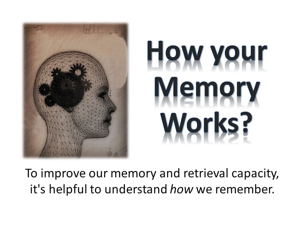 How your Memory Works.