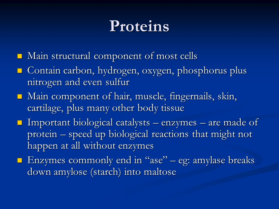 Proteins Main structural component of most cells