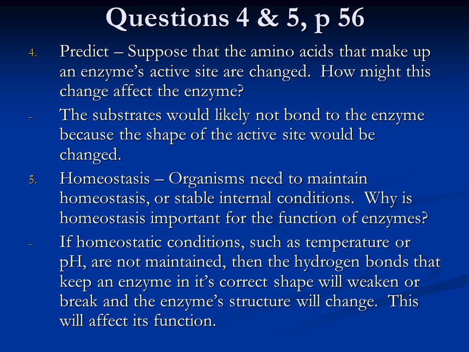 Questions 4 & 5, p 56