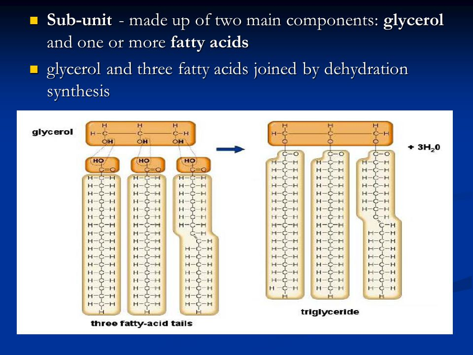 Sub-unit - made up of two main components: glycerol and one or more fatty acids