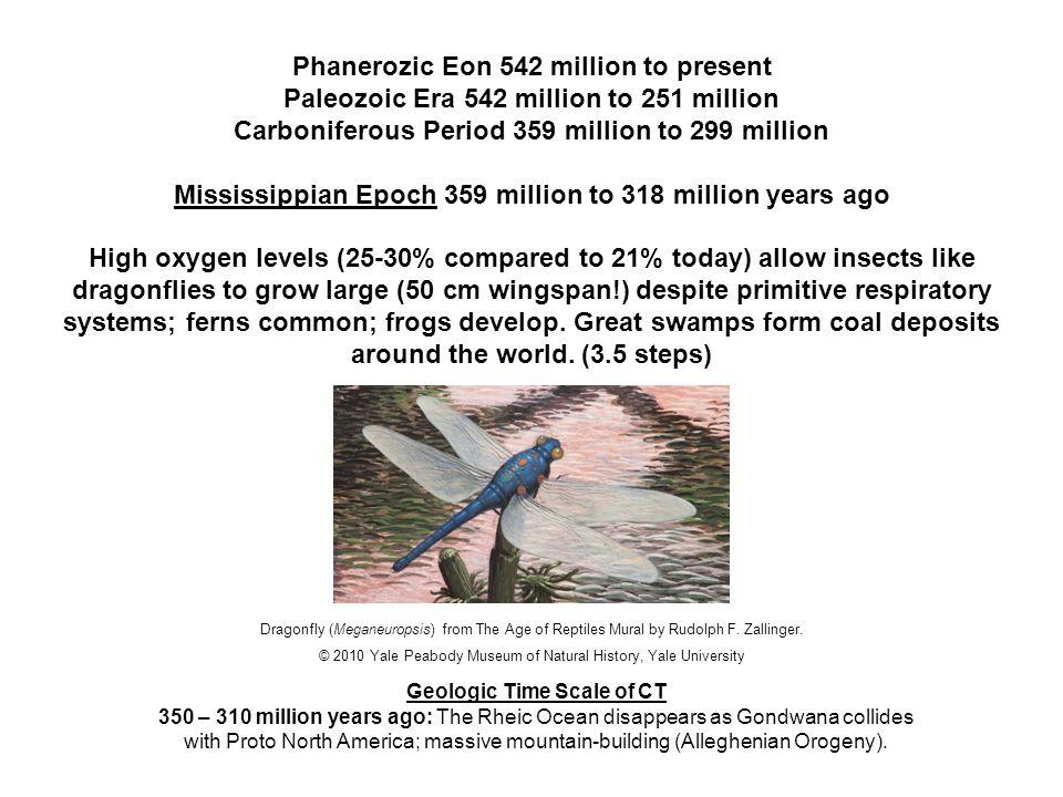 Phanerozic Eon 542 million to present