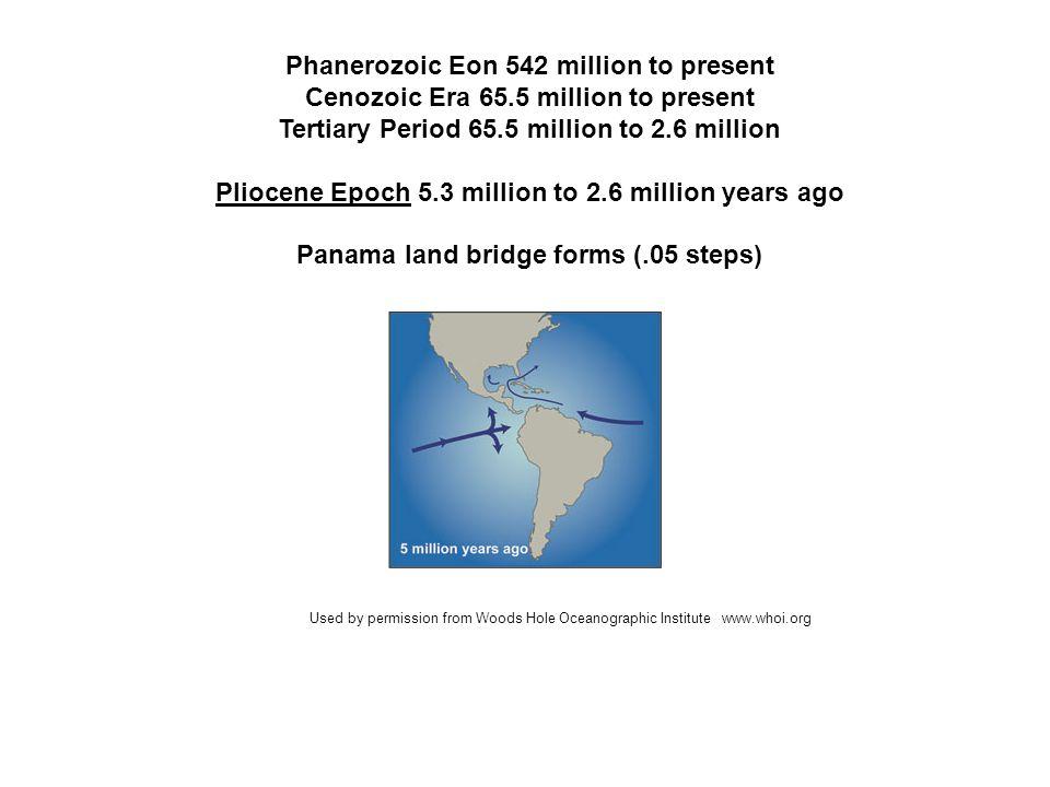 Phanerozoic Eon 542 million to present