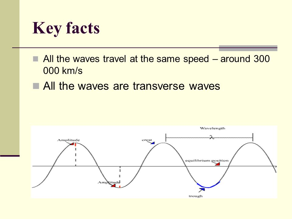 Key facts All the waves are transverse waves