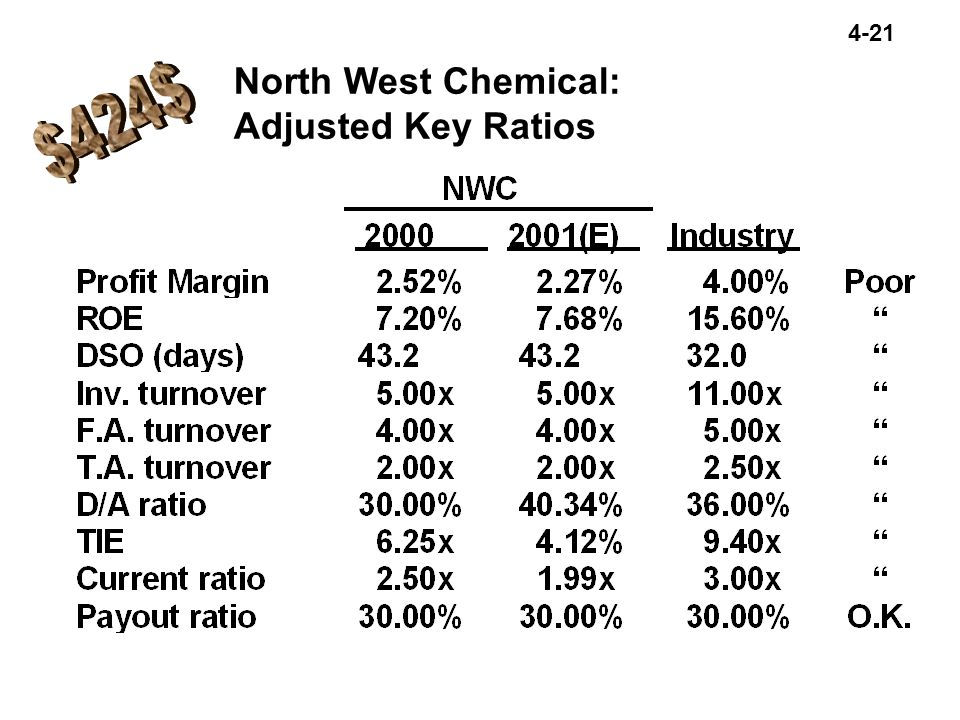 North West Chemical: Adjusted Key Ratios