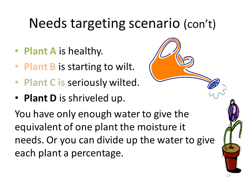 Needs targeting scenario (con't)