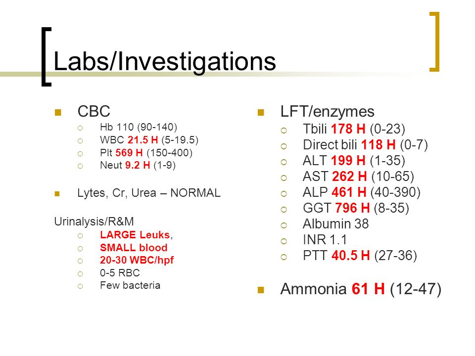 Labs/Investigations CBC LFT/enzymes Ammonia 61 H (12-47)