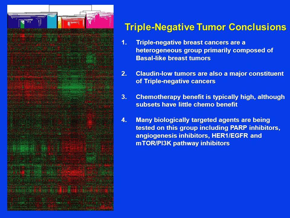 Triple-Negative Tumor Conclusions