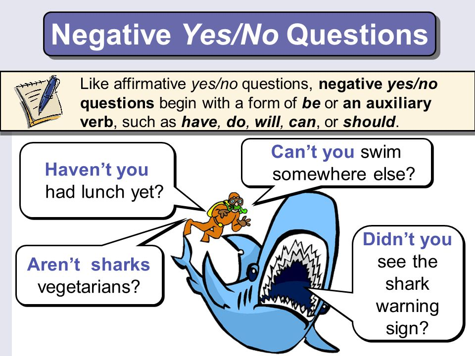 Negative Yes/No Questions