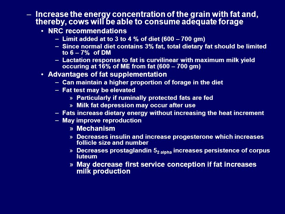 Increase the energy concentration of the grain with fat and, thereby, cows will be able to consume adequate forage