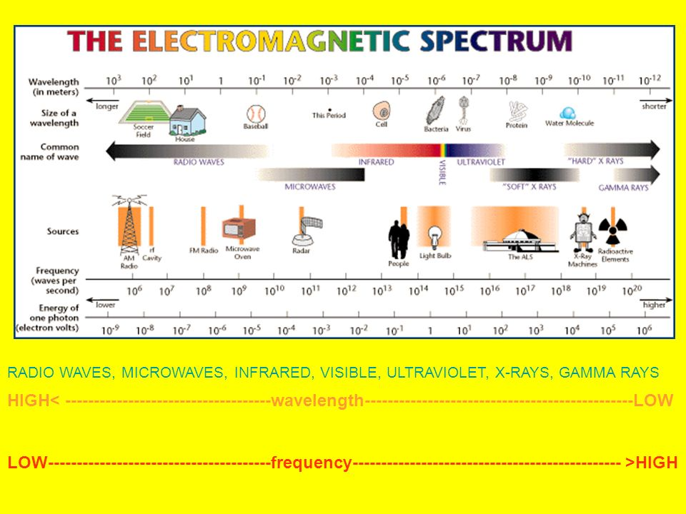 What Are XRays Electromagnetic Spectrum Facts and Uses